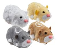 Go Go Hamsters - Chunk, Pipsqueak, Num Nums and Mr Squiggles